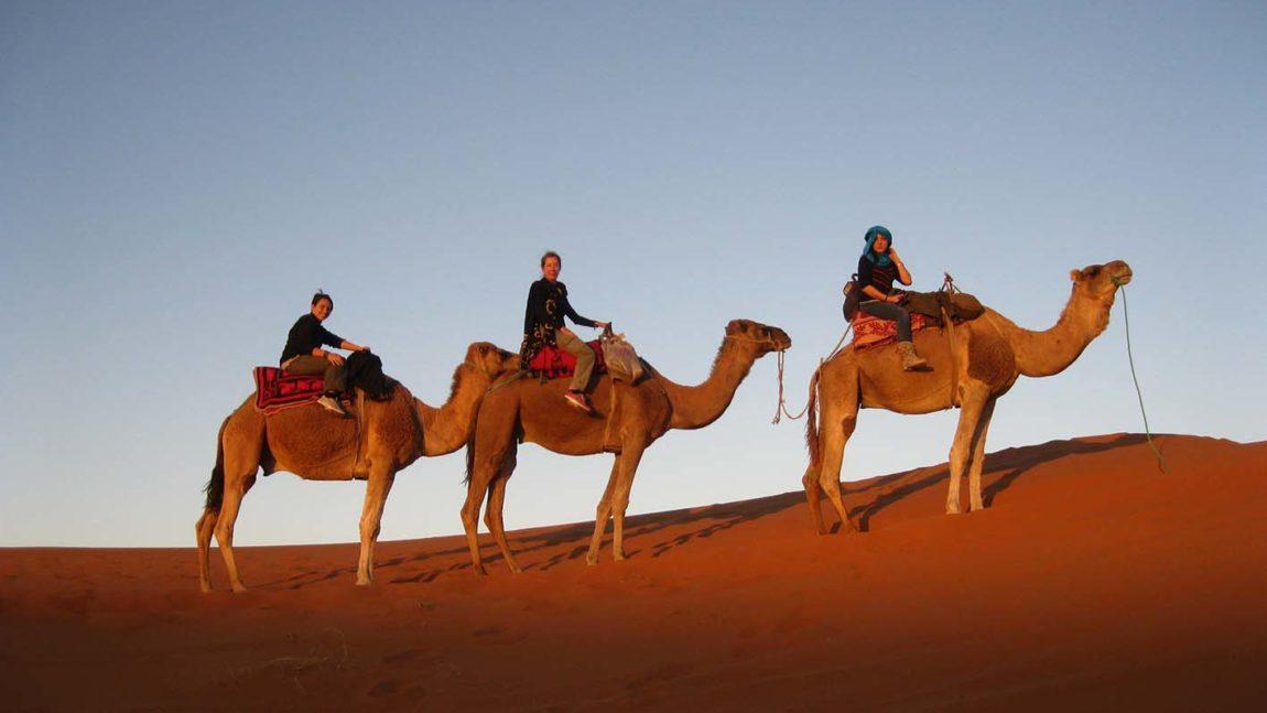 Capitales imperiales, desierto de Merzouga y ruta de las 1000 kasbahs