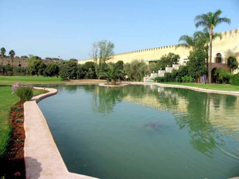 Programa especial en Fez & Golf