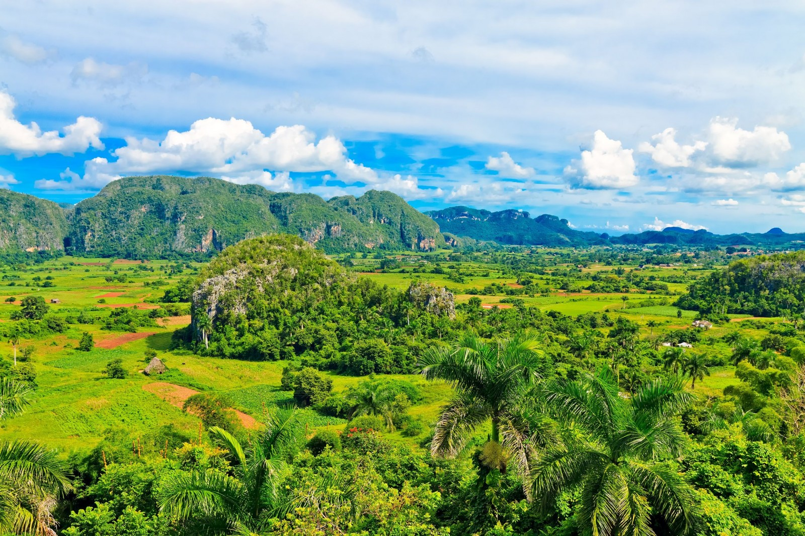 the-vinales-valley-in-cuba-a-famous-tourist-destination-and-a-major-tobacco-growing-area-1600x1066