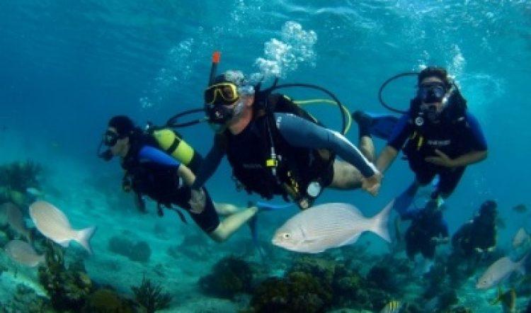 Programa de Buceo en el Sur de Cuba